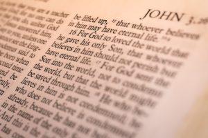 Evangelism: (Shepherd's Echo)